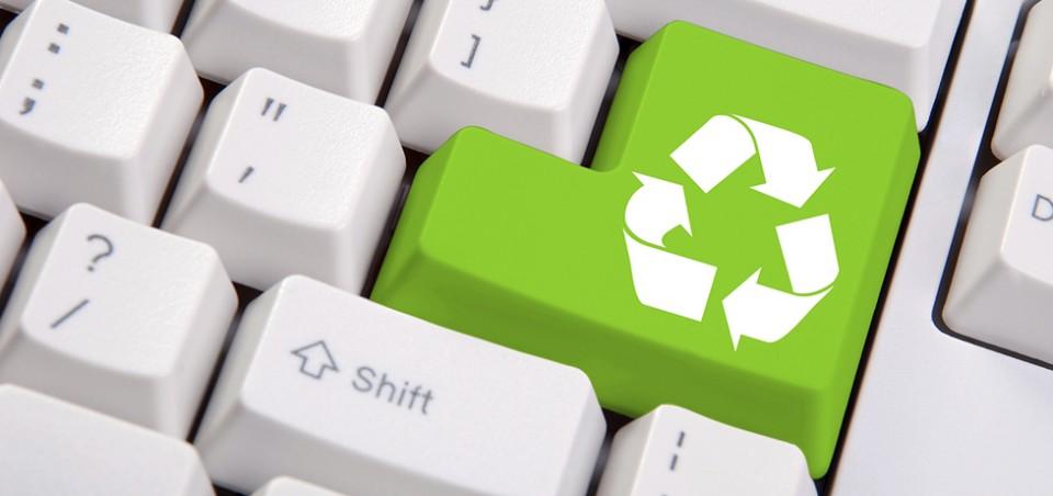 10 cursos de graça para quem quer salvar o meio ambiente