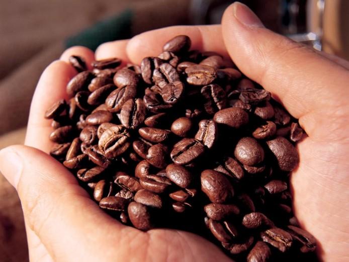 MDA lança edital para compra de café orgânico da Agricultura Familiar