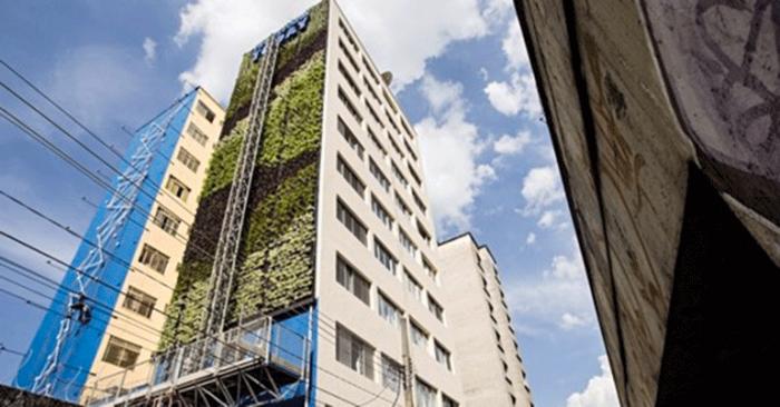Primeiro jardim vertical nos arredores do Minhocão está prestes a ser concluído