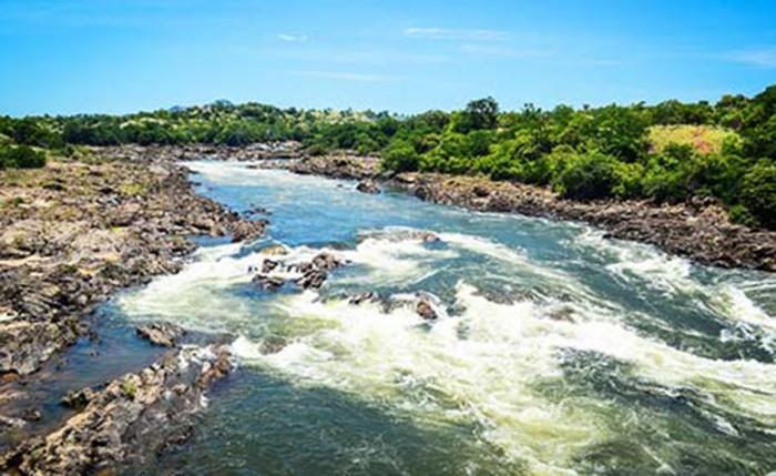 rio-rocha-ecod