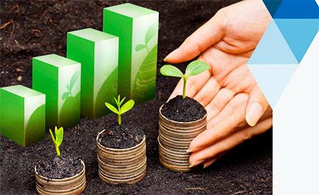 Sebrae lança nova cartilha sobre sustentabilidade nos pequenos negócios