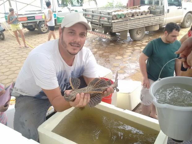 Peixes resgatados no Rio Doce, no ES, começam a ser soltos em lagoas