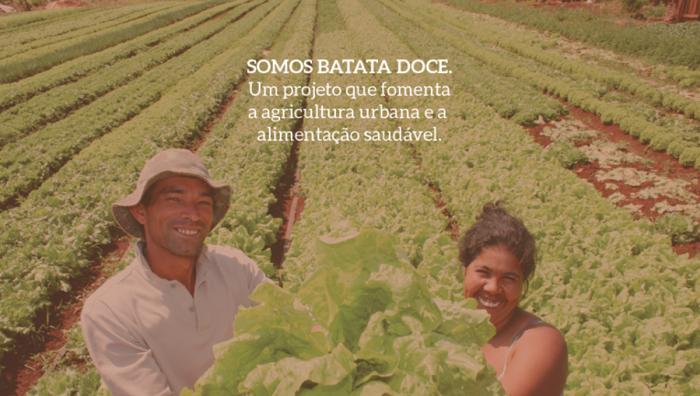 Plataforma une pequenos agricultores a pessoas interessadas em comprar alimentos orgânicos