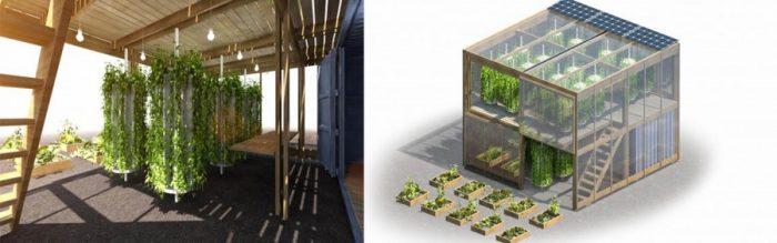 Dinamarqueses criam fazenda urbana que produz 6 toneladas de alimentos em pouco espaço