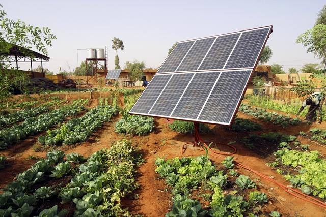 Pequenos produtores terão acesso a equipamentos de energia solar