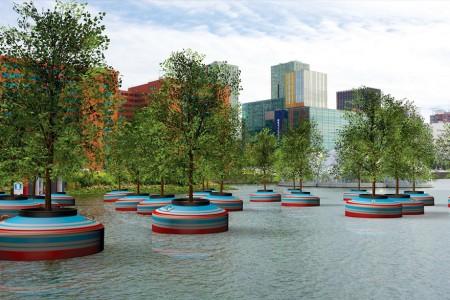 Holanda vai ganhar uma floresta flutuante em março deste ano