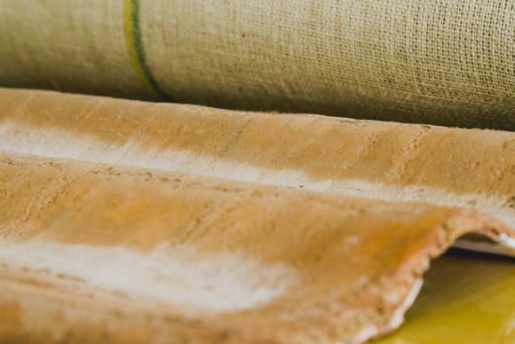 Pesquisadores da Universidade Federal do Amazonas desenvolvem telha sustentável