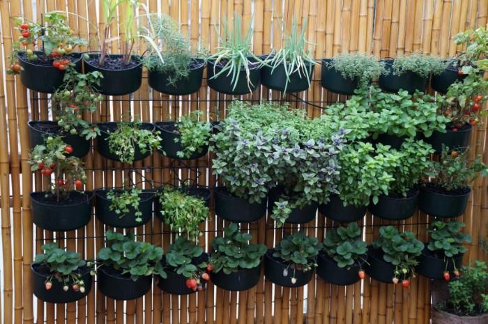horta e jardim vertical : Jardim e horta vertical