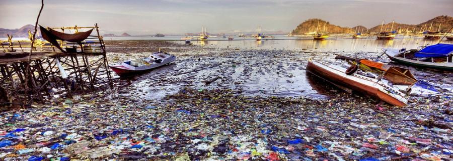 OCEANOS EM 2050 VÃO TER MAIS PLÁSTICO DO QUE PEIXES