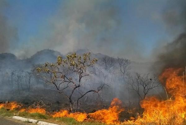 Em 2015, foram registrados cerca de 235 mil focos de queimadas no paísJosé Cruz/Agência Brasil