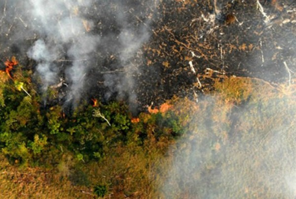 Foto: Divulgação/Secom AC