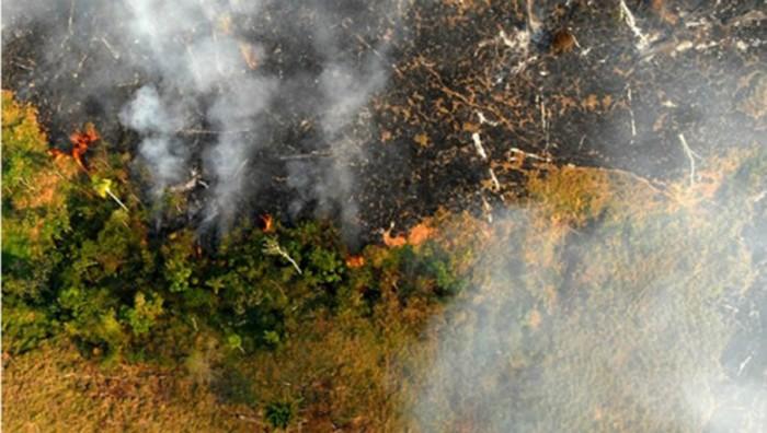 Número de queimadas em Roraima bate recorde