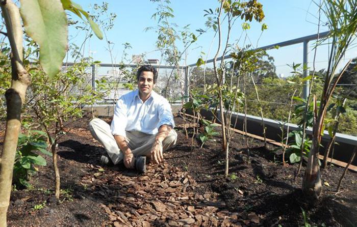 7 meses depois! Restauração florestal em São Paulo no sistema Pocket Forest
