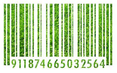 Licitações Sustentáveis e sua Influência no Mercado