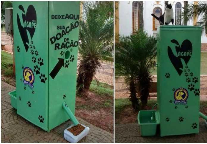 Estudante-de-engenharia-transformou-uma-geladeira-velha-em-máquina-que-alimenta-cães-de-rua-696x483