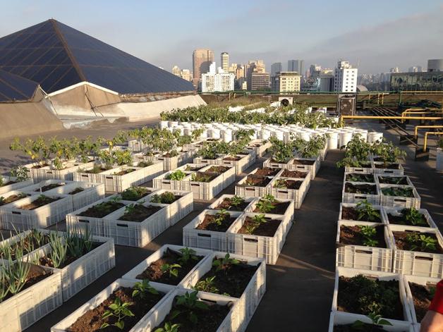 Shopping de São Paulo vence prêmio de sustentabilidade com horta e composteira em sua cobertura