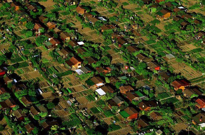 Moradores de bairro na Suíça plantam e compartilham seu próprio alimento