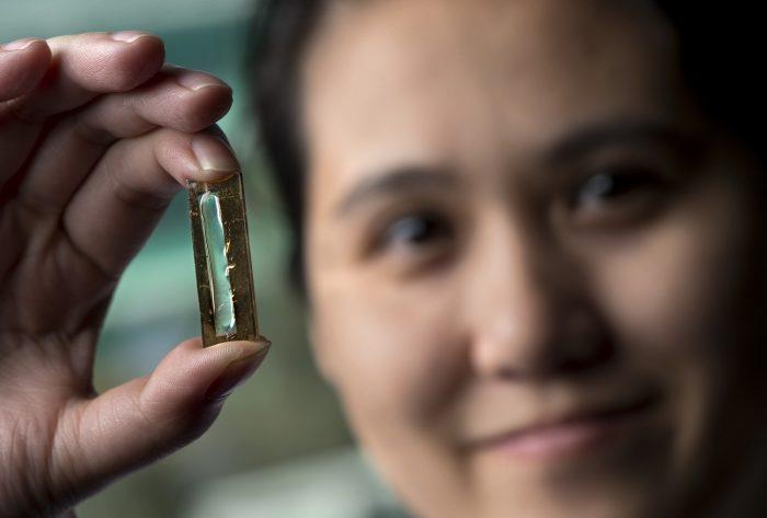 Por acidente, cientistas descobrem método para prolongar vida útil de baterias