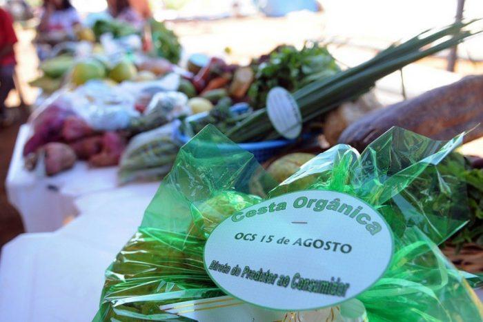 Treinados pela Emater produtores rurais recebem certificado de produtores orgânicos
