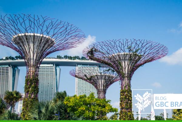 singapura-Blog