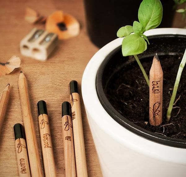 Lápices sustentables que se convierten en plantas