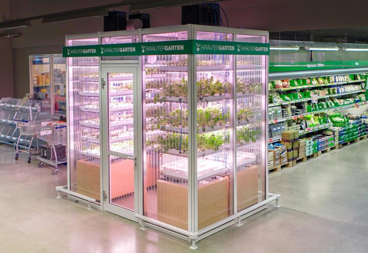 O supermercado que cultiva ervas e temperos orgânicos dentro da loja — você colhe logo antes de levar para casa