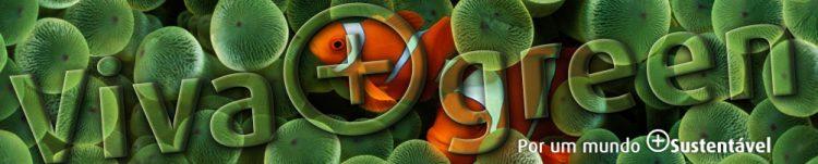Header_Viva+Clown-fish
