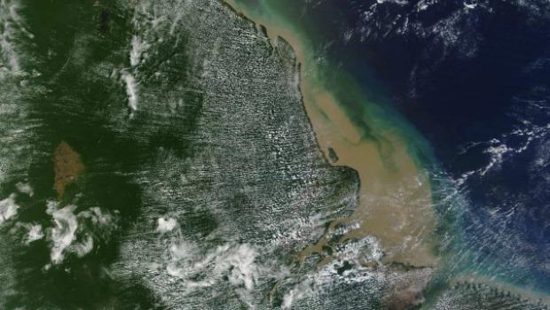 Recife de coral descoberto na Amazônia tem cerca de mil quilômetros