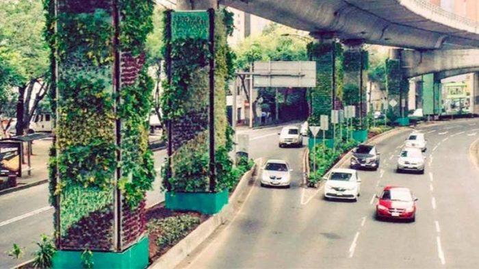 Jardins verticais gigantes mudam visual da Cidade do México
