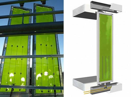 Conheça edifício cuja energia é gerada por algas