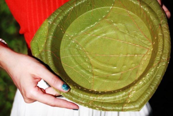conheca-pratos-biodegradaveis-formato-folha-se-decompoe-28-dia