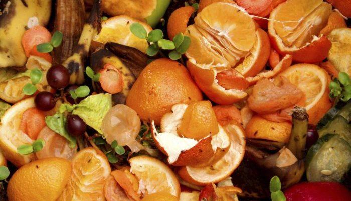 Metade de toda a comida produzida nos EUA é deitada ao lixo