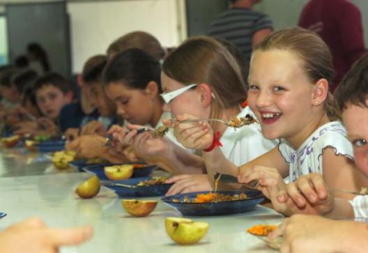 Aprovada lei que inclui orgânicos na merenda escolar de Porto Alegre