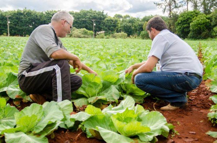 No Centro-Oeste é hora de preparar a terra para o plantio