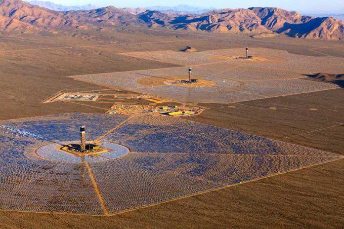 Usina solar na Califórnia mata 6 mil pássaros por ano