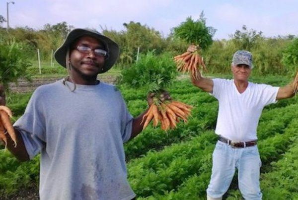 fazenda-contrata-apenas-moradores-rua