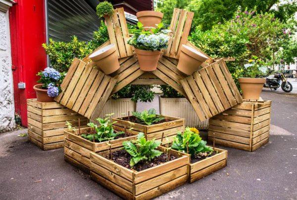 paris-doa-espacos-publicos-cidadaos-plantarem-organicos-ainda-da-sementes