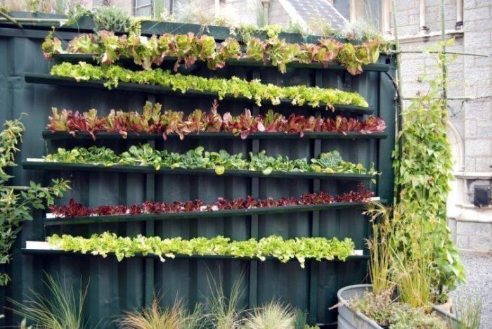 17 ideas para construir jardines verticalesVivagreen